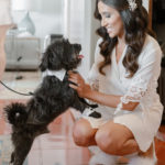 A small dog wearing cuffs and a collar gets love from the bride while getting ready.