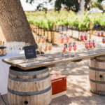 This wine country wedding welcome beverages are refreshing wine popsicles.
